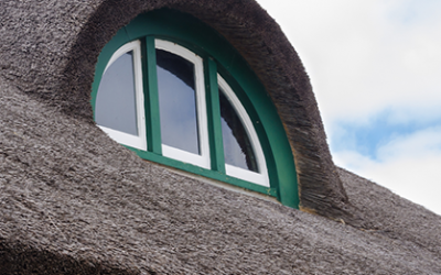 The pros and cons of buying a thatched roof property